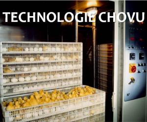 Technologie chovu